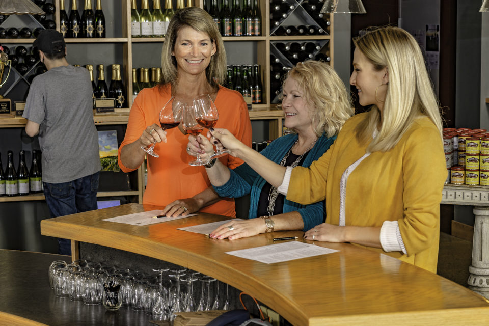 women toasting at a wineries of old mission peninsula tasting room