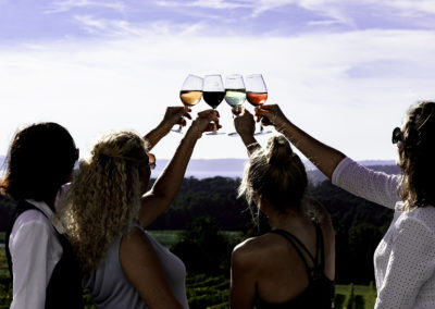 Four women toasting 2U7A7533 web