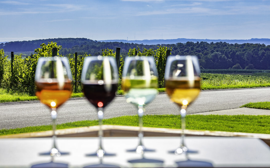 glasses of wine on vineyard overlook